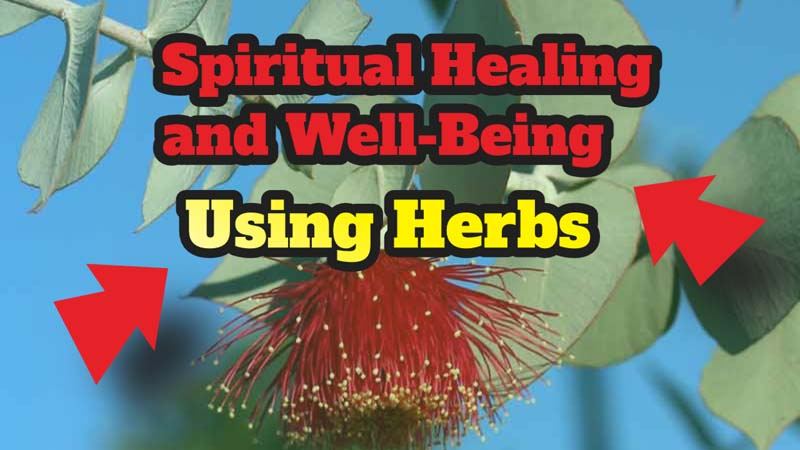 Spiritual Healing and Well-Being Using Herbs