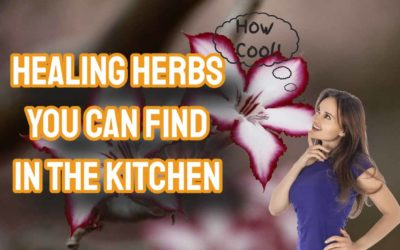 Healing Herbs You Can Find In The Kitchen